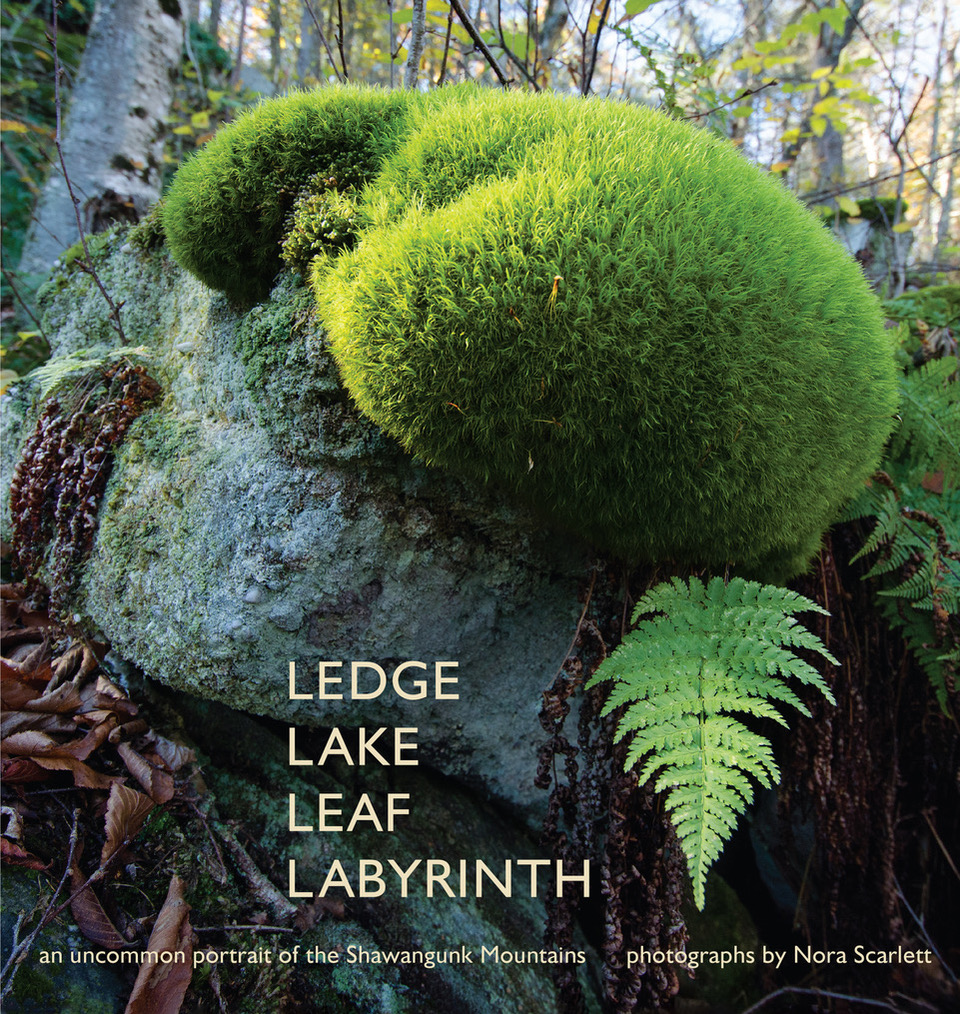 Ledge Lake Leaf Labyrinth: an uncommon portrait of Shawangunks